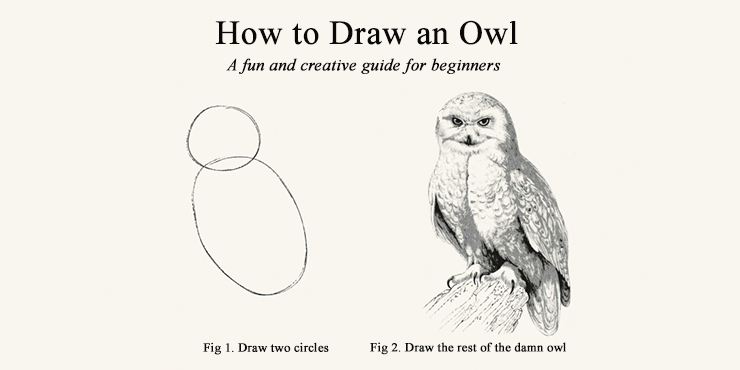 Draw the rest of the damn owl